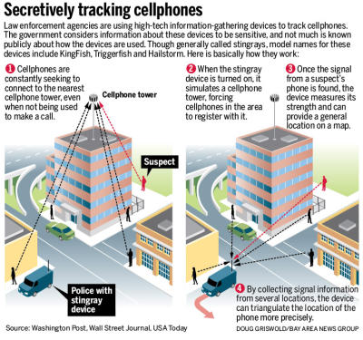 Stingray Cell Tracking