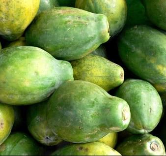 ge-papaya